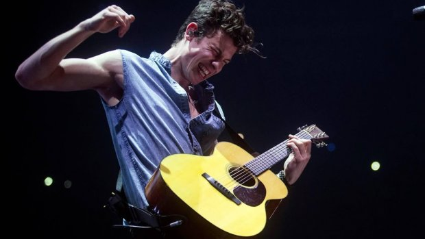Shawn Mendes zet tattoo na idee van fan