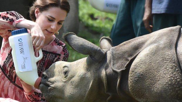Lief! Kate Middleton op de bres voor kleine neushoorns