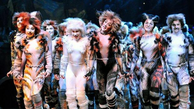 Sterrencast verfilming musical Cats breidt zich uit