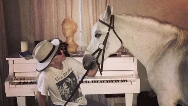 Lady Gaga neemt afscheid van geliefd paard