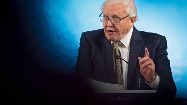 93-jarige David Attenborough wil clubhit maken