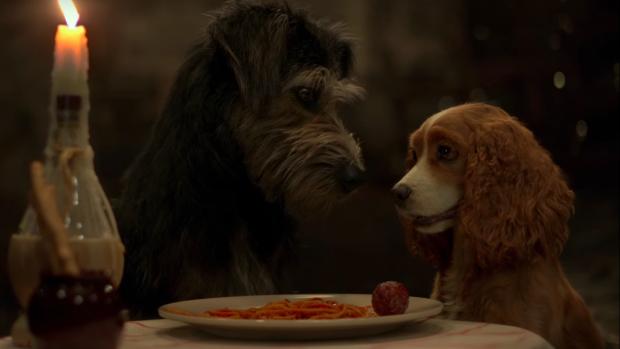 Cute: De eerste trailer van Lady en de Vagebond is hier