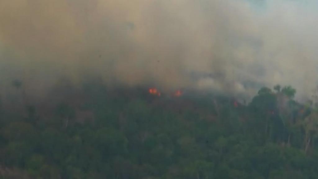 Celebrities posten massaal over bosbranden in Brazilië
